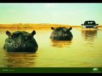 """Отличная реклама внедорожника LandRover. Аналогия с бегемотами воспринимается на""""ура""""."""