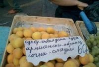 Армиански абрикоз